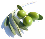 Olives from Sorrento