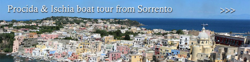Procida and Ischia boat tour from Sorrento