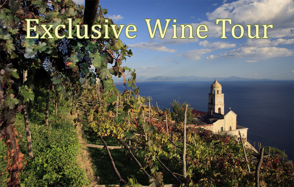 Exclusive wine tours from Sorrento