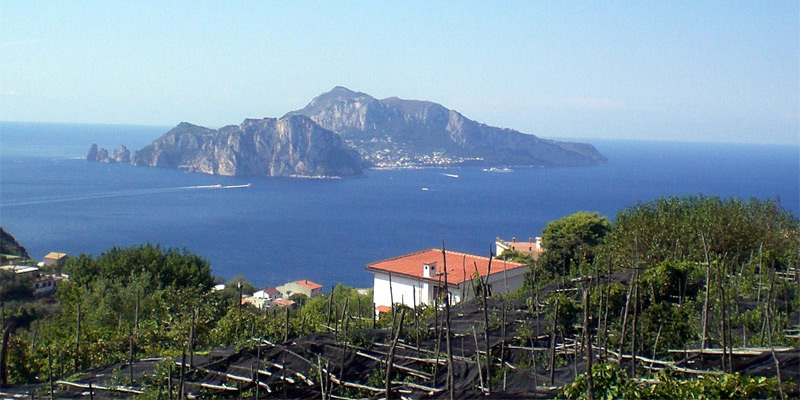 View of the island of Capri
