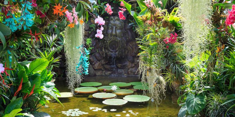 Mortella Gardens